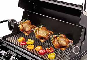 Bbq_poultry_2