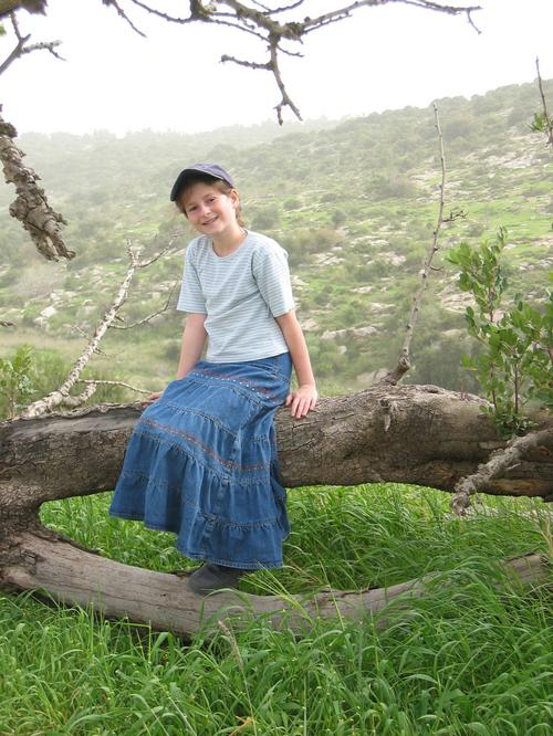 Ariella on the Carob Tree
