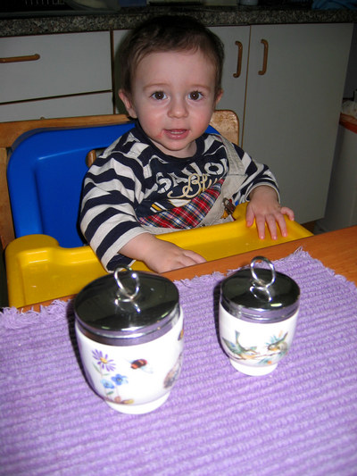 Toddler_coddler